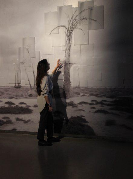 LE FRAC CORSE EXPOSE THANAYA